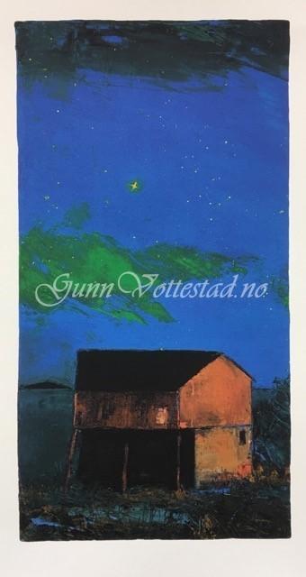 Stjernenatt kr 4300,-
